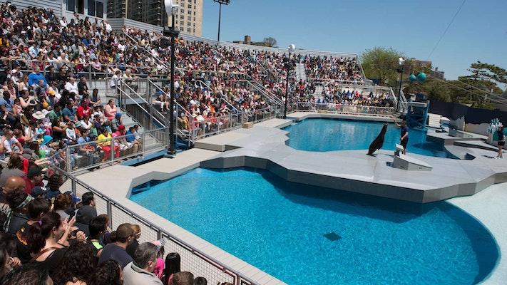 Photo of Aquatheater